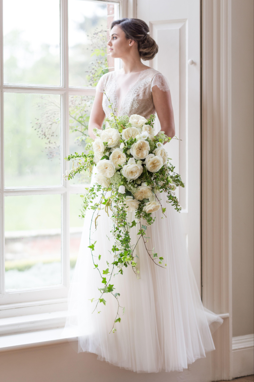 Ella Rose By David Austin Wedding Event Roses A Beautiful Bride