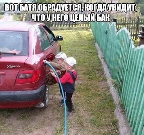Т.И.Е. Фото из интернета.