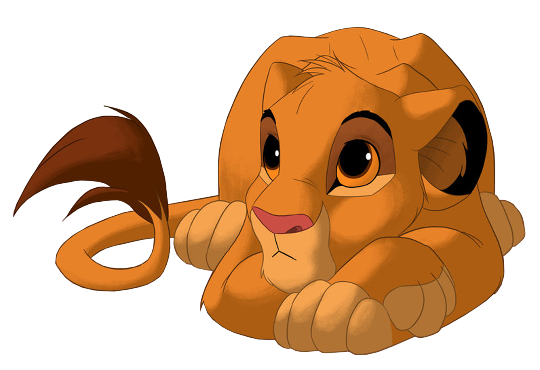 Lion King Png Image Lion King Pictures Lion King Art Lion King