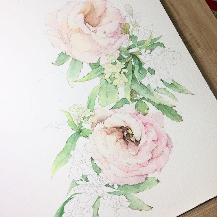 오늘도 겨울 일러스트 포인세티아 꽃 꽃그림 식물 수채화 그림 일러스트 겨울 크리스마스 일러스트레이터 Aquarelle Watercolor Watercolour Waterblog Artshow Flowers Art 수채화 꽃 그림 칠하기