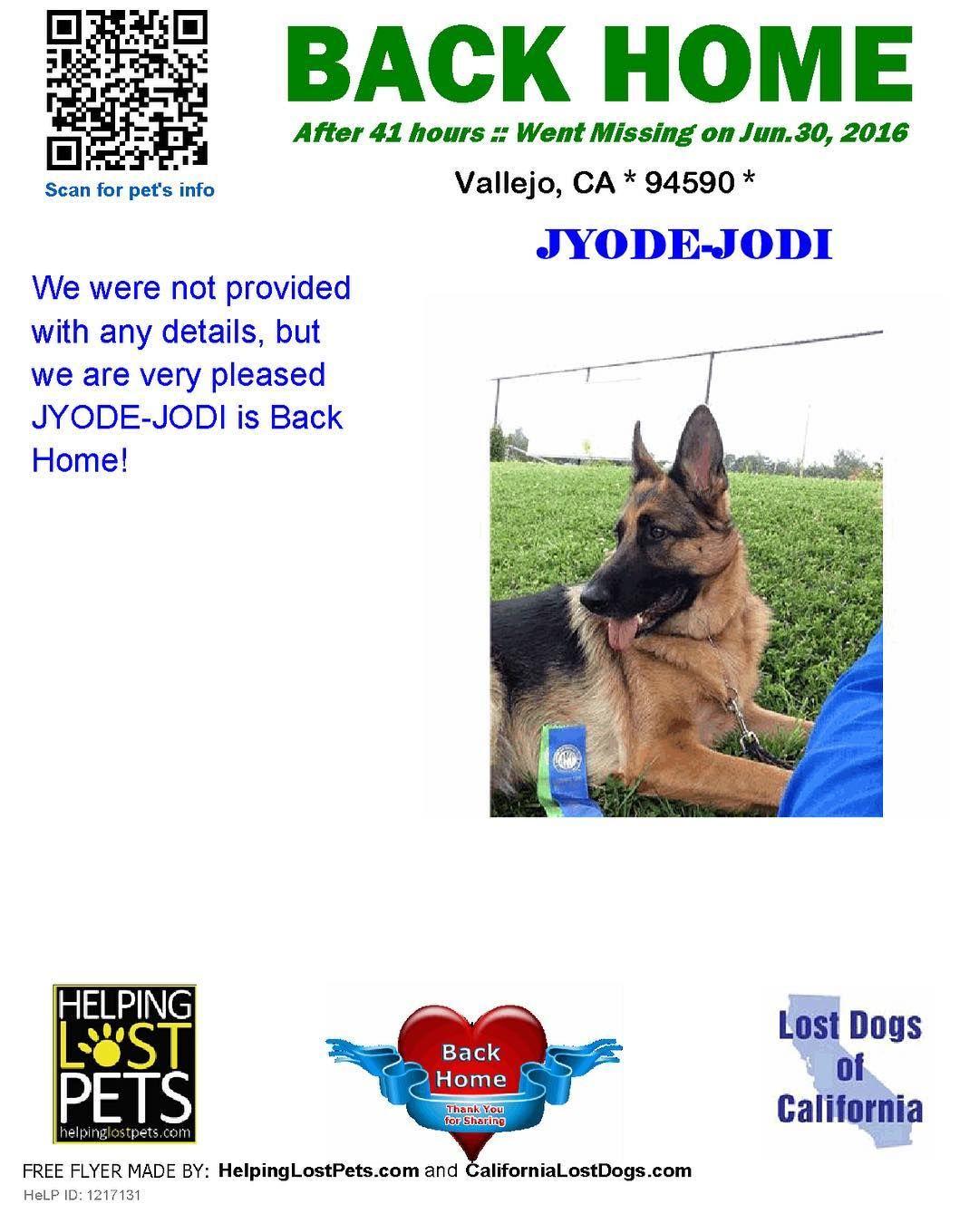 Backhome Jyode Jodi Germanshepherddog From Vallejo Ca Has Been Reunited With Her Family Lost 6 30 16 Back Home 7 1 1 Losing A Dog Losing A Pet Vallejo
