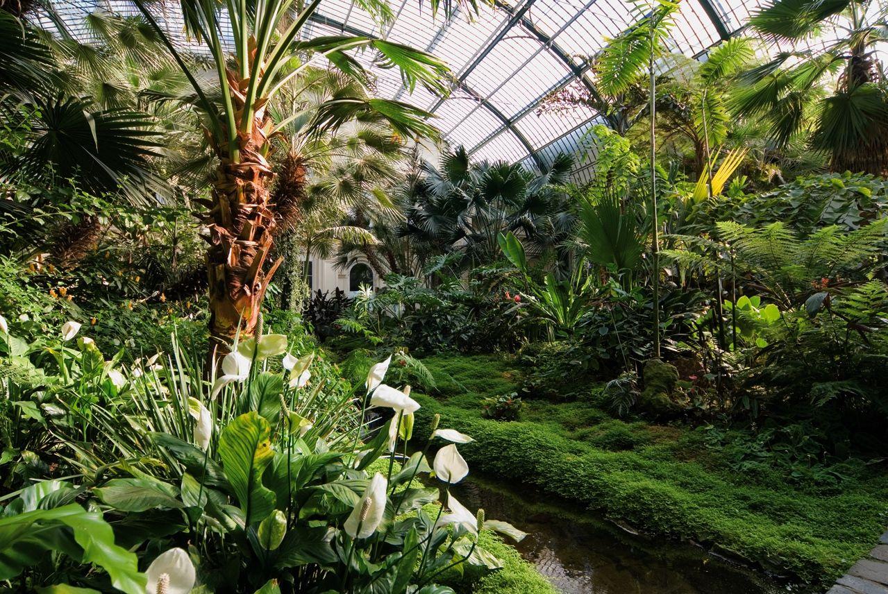 Awesome Palmengarten botanical gardens Frankfurt