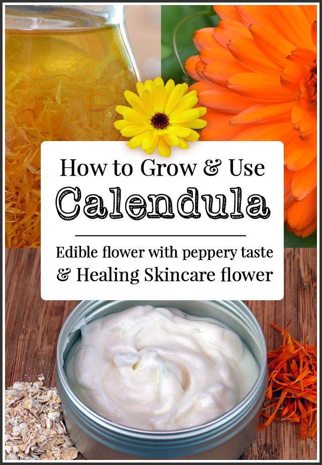 How to use Calendula Flowers for Skin Calendula