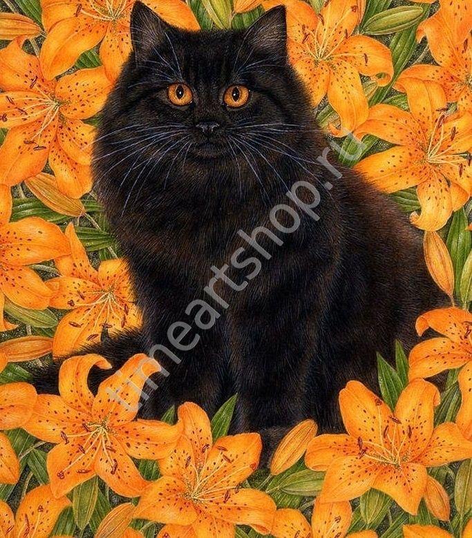 Чёрный кот и тигровые лилии, картина раскраска по номерам ...