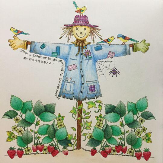 Scarecrow Secret Garden Espantalho Jardim Secreto