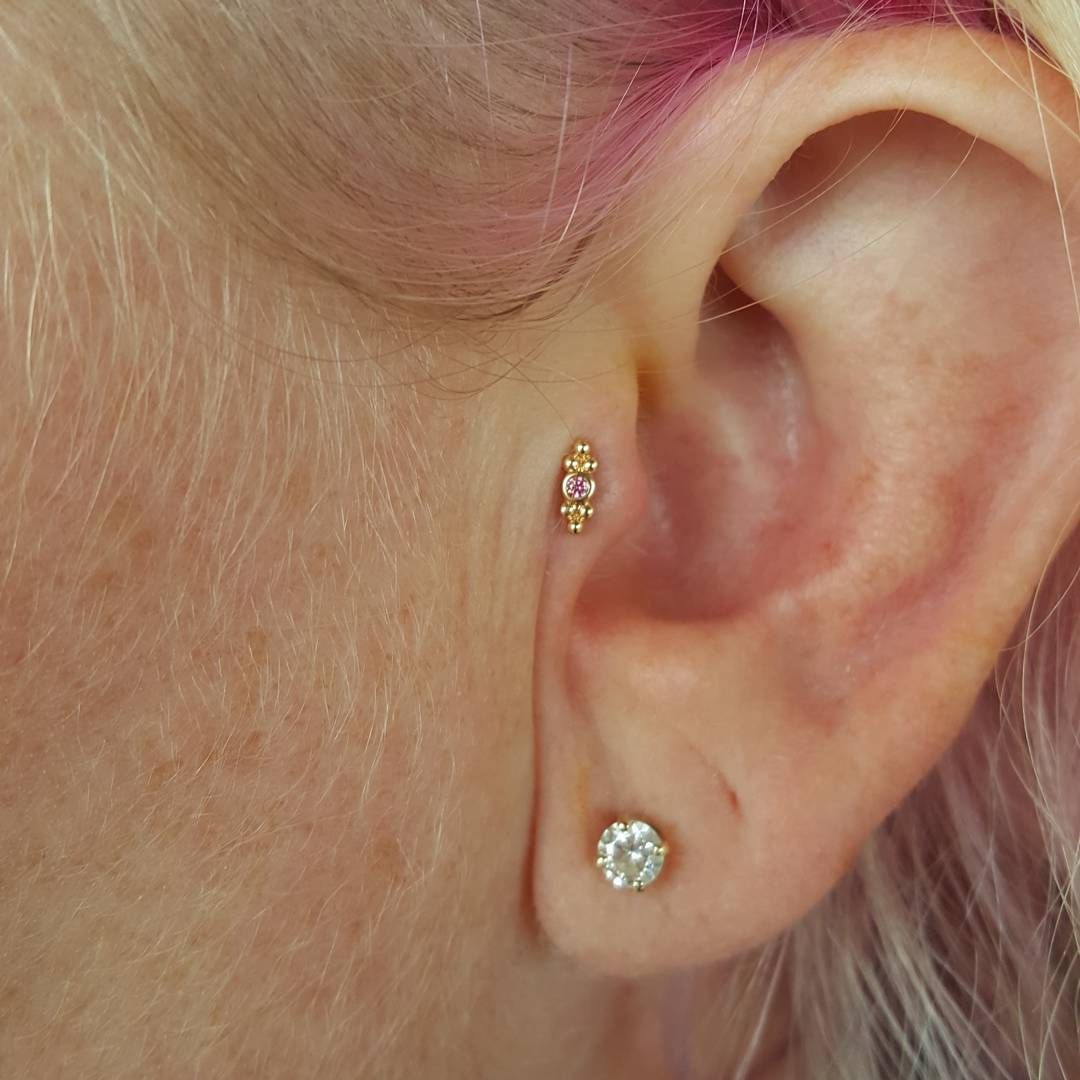Ripper little tragus with a 18kt gold end from anatometalinc