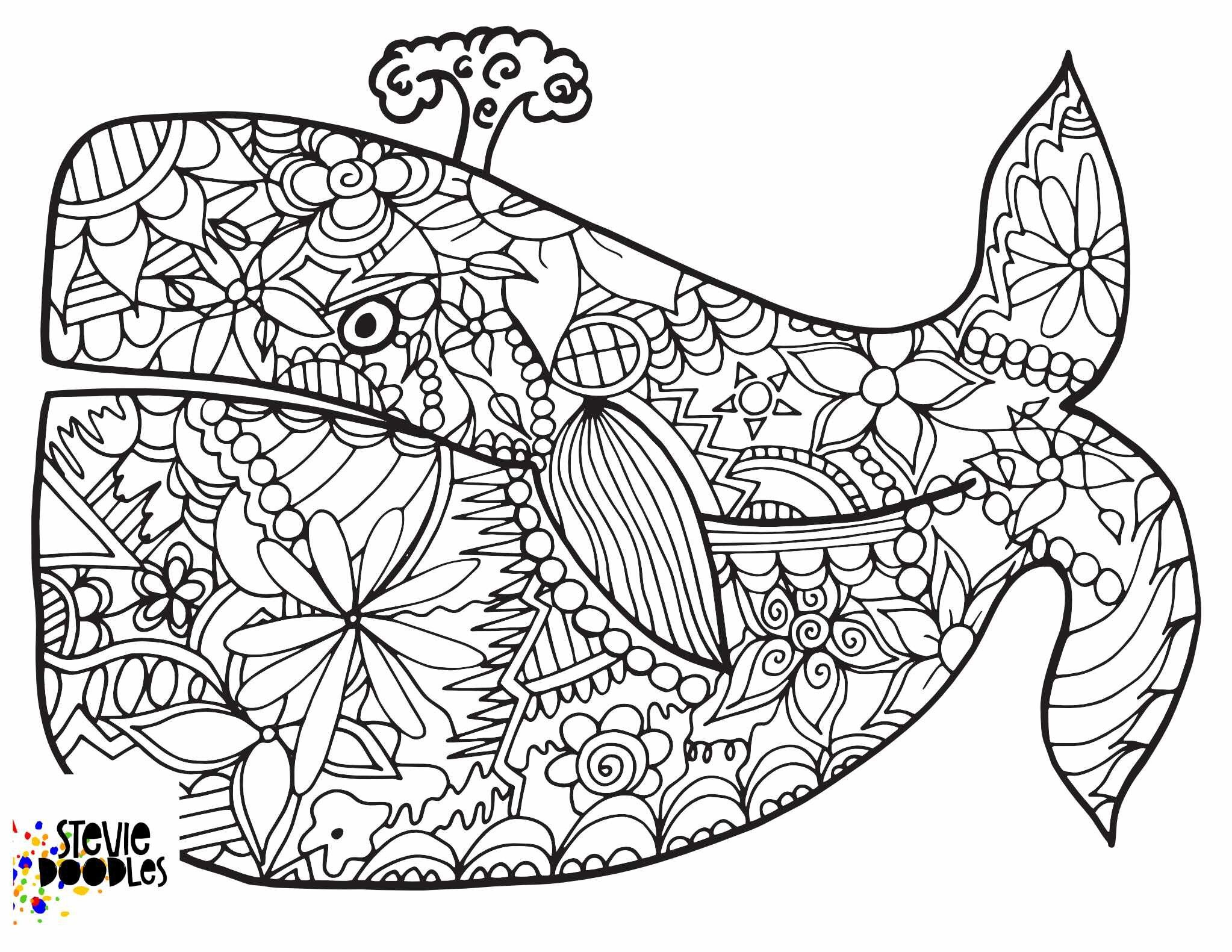 Whale Free Coloring Page Stevie Doodles Whale Coloring Pages Coloring Pages Free Kids Coloring Pages