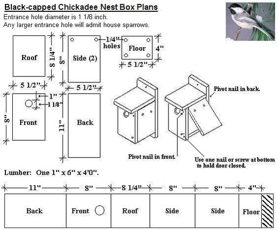 Coveside Biz Bird House Plans Bird Houses Bird House Plans Free