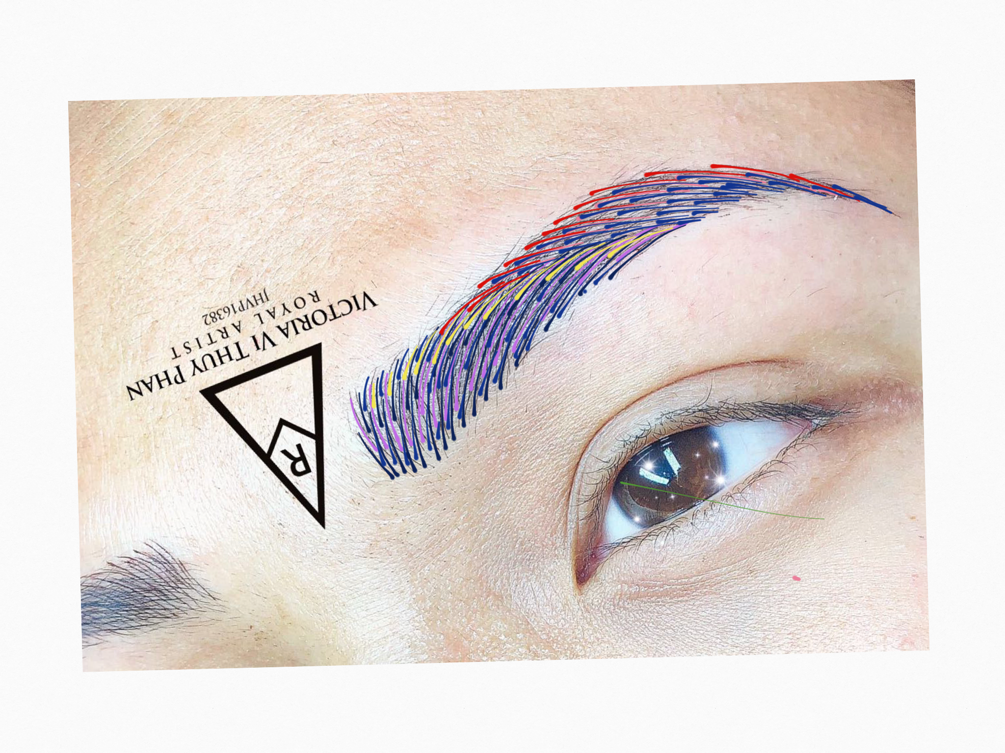 Step by step methods for microblading brow studio makeup studio eyebrows step by step