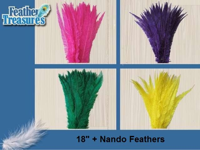 Buy #nando ostrich feathers in vibrant colors for your #craft work.