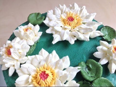 Seria Kwiaty Z Kremu 8 Stokrotki Youtube Succulents Plants