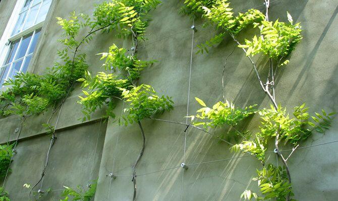 Herb Garden Outdoor Patio Decks