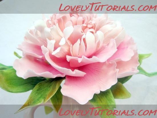 peony gumpaste flower tutorial torten anleitungen. Black Bedroom Furniture Sets. Home Design Ideas
