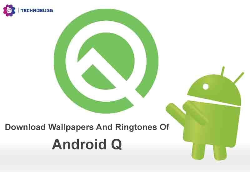 Download Wallpapers And Ringtones Of Android Q Pixel