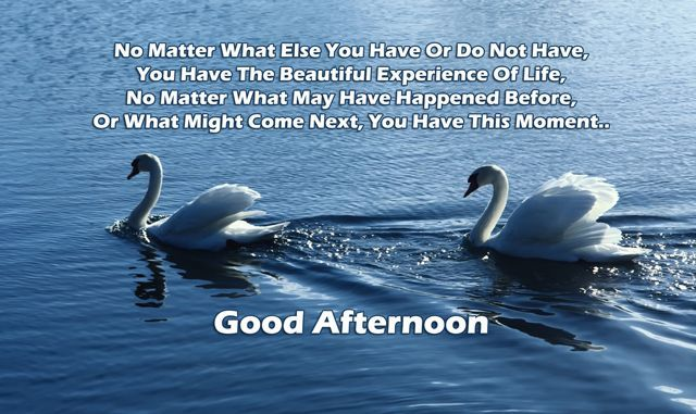 Inspirational Good Afternoon Quotes And Sayings Images Good