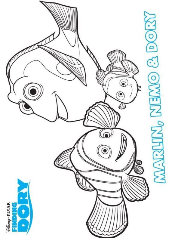 16 coloring pages of Finding Dory on Kids-n-Funuk On Kids-n-Fun - new pixar coloring pages finding nemo