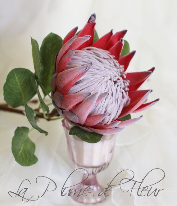 Rust Red King Protea Artificial Silk Flower Perfect For Diy Wedding Home Decor And Craft Protea Flower Artificial Silk Flowers Protea