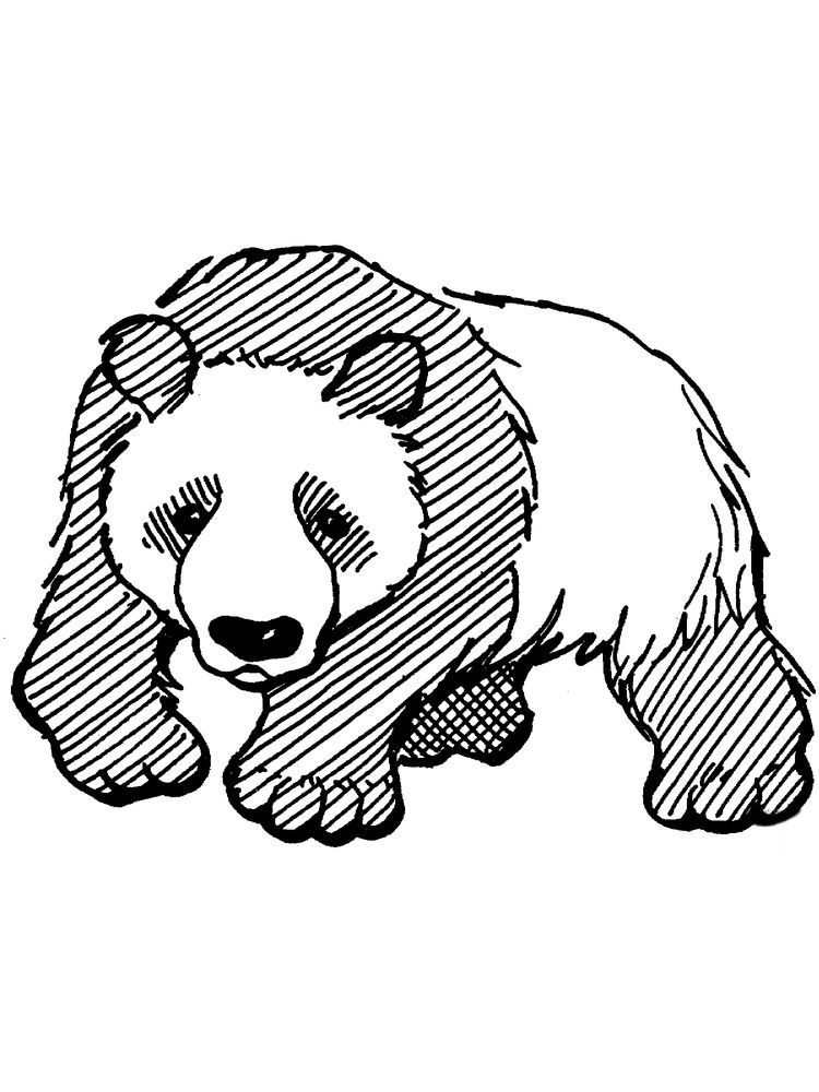 Cute Panda Coloring Pages - Coloring Home | 1000x750