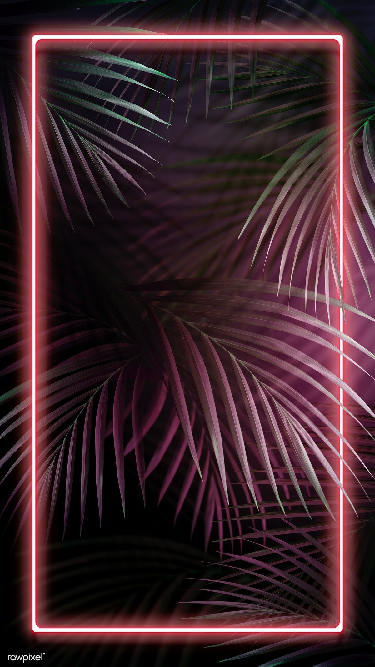 Download premium illustration of Tropical pink neon lights phone screen