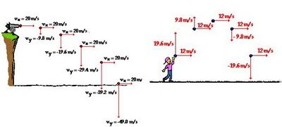 Ball Trajectory Parabola Above Diagram Shows That There Is No Change In Horizontal Velocity Physics Parabola Diagram