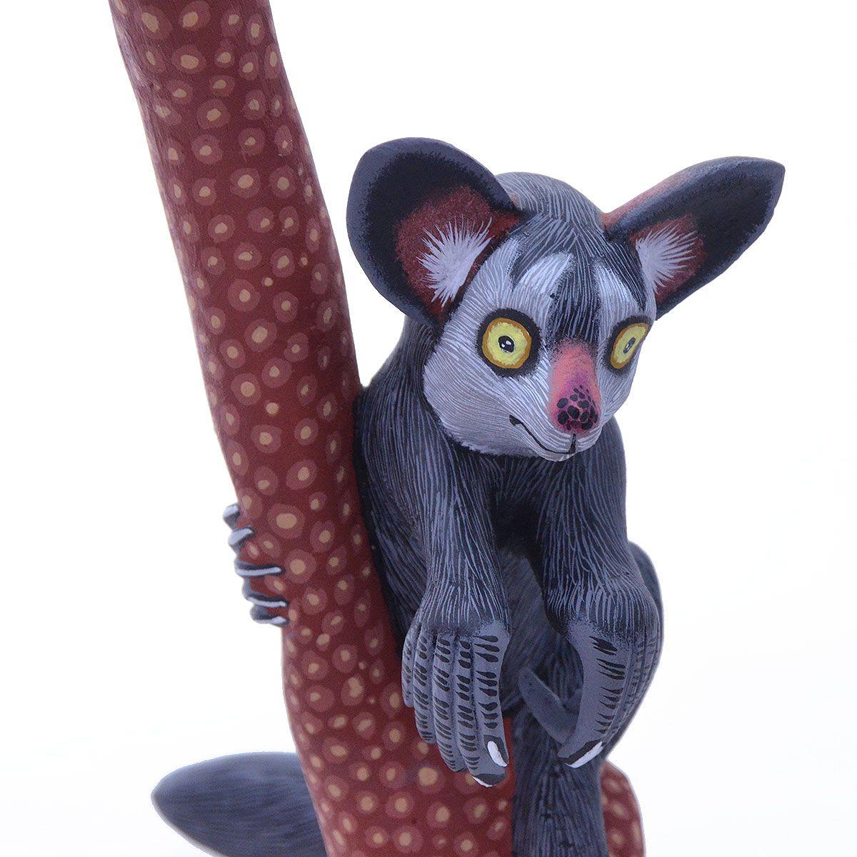 Eleazar morales madagascar ayeaye lemur pinterest mexican art
