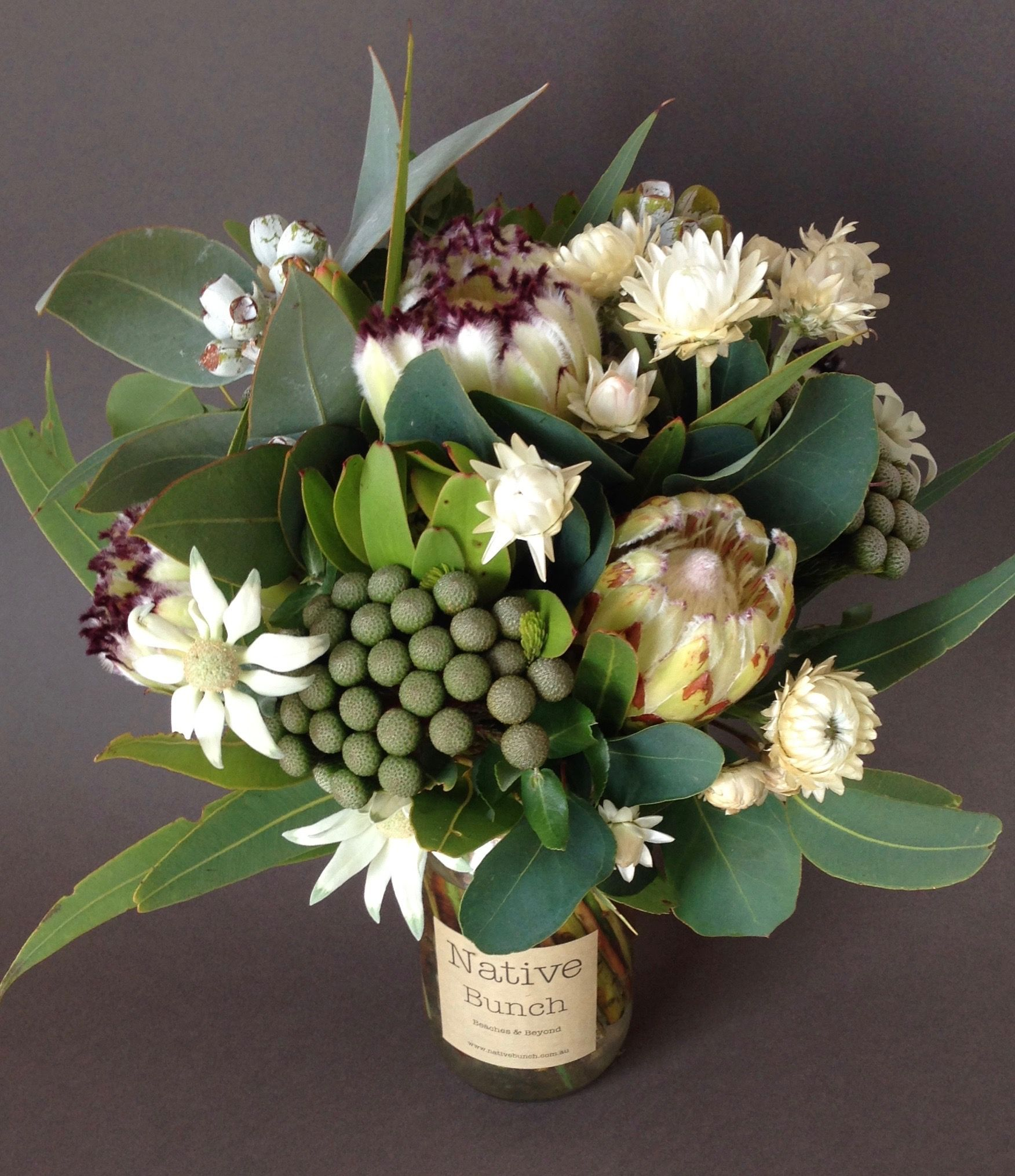 Special occasion Native Flowers Flannel Flowers, Protea