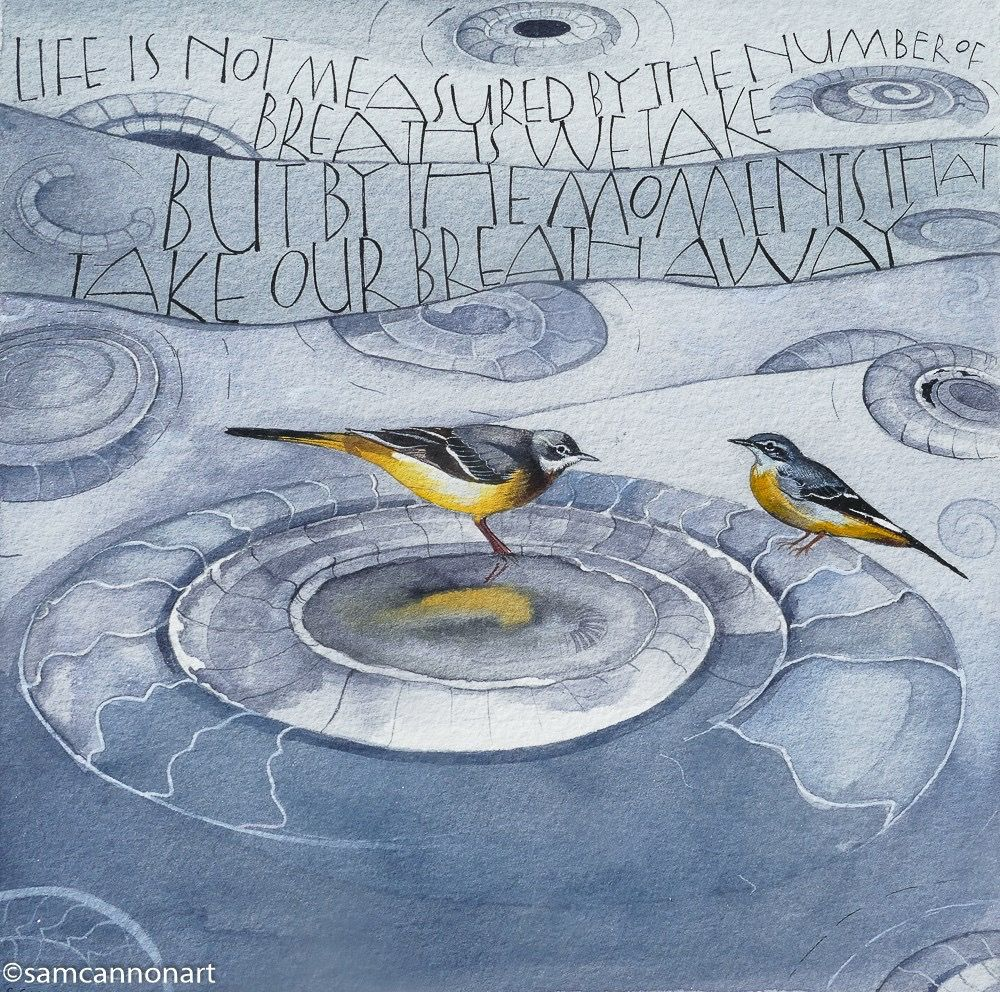 Watercolour on watercolour paper of the grey wagtails taking a bath in one of the ammonites found on Monmouth Beach, Dorset. This shows the amazing ammonite pavement.