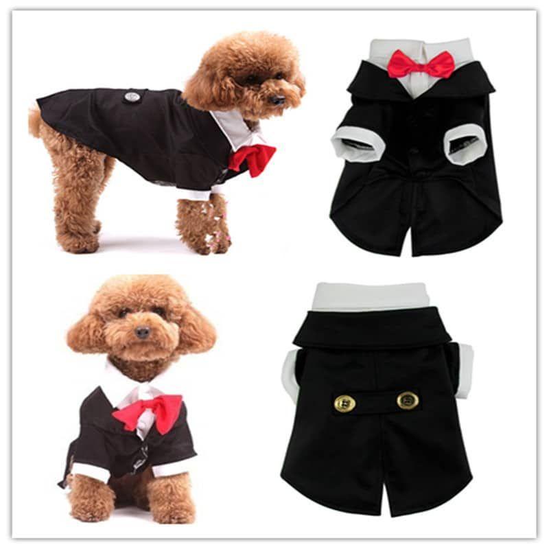 te mostraremos algunos patrones de ropa para perros machos y haz que ...