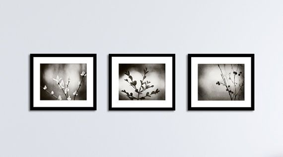 Black and white botanical photography set three nature prints 11x14 8x10 5x7 dark grey gray branches photographs branch modern wall art
