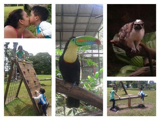 Dia en el zoo :)