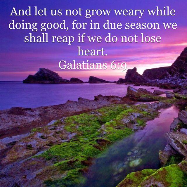 Image result for do not grow weary in doing good nkjv