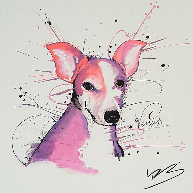 paint#painting#drawing#draw#dog#dogg#black#white#design#modern ...