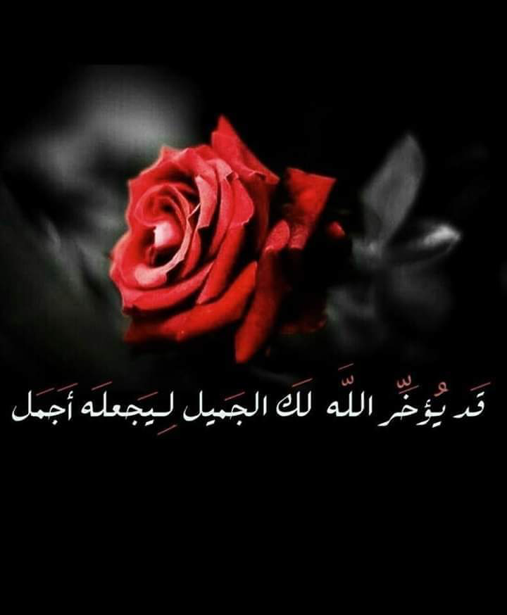 Islam image by صورة و كلمة on مواعظ ☘️ خواطر إسلامية ️