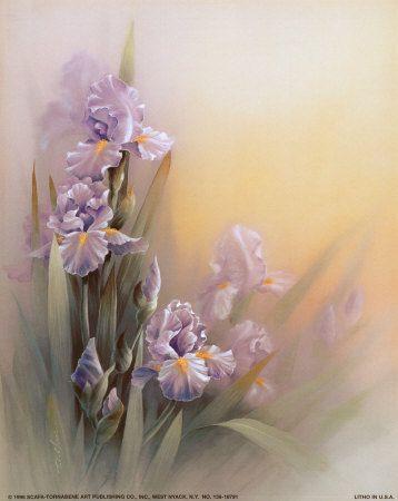 Iris Violets Art Par T C Chiu Sur Allposters Fr Peinture