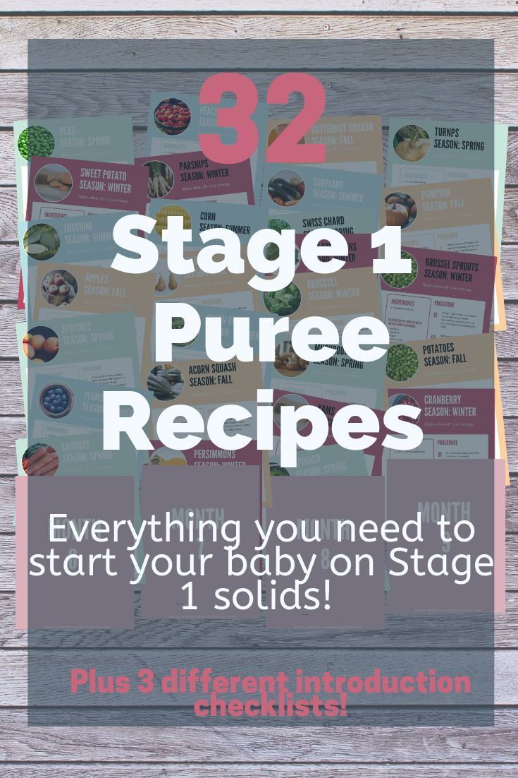 Homemade Stage 1 Baby Food Cookbook - Bringing Back the Housewife