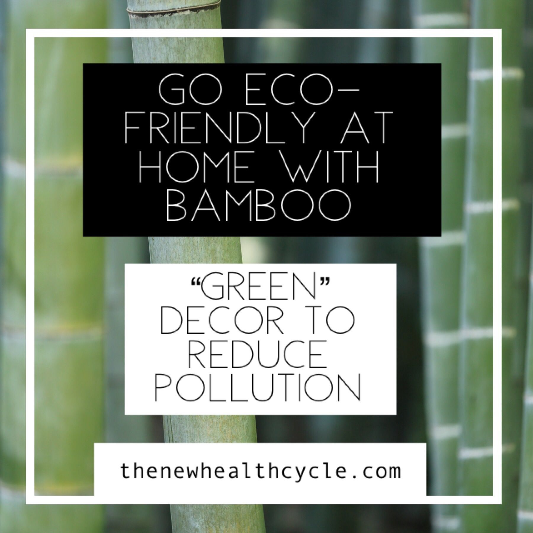 Go EcoFriendly at Home with Bamboo Green Decor to Reduce