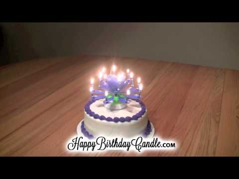 Amazing Happy Birthday Candle Opens Like a Flower Plays Music