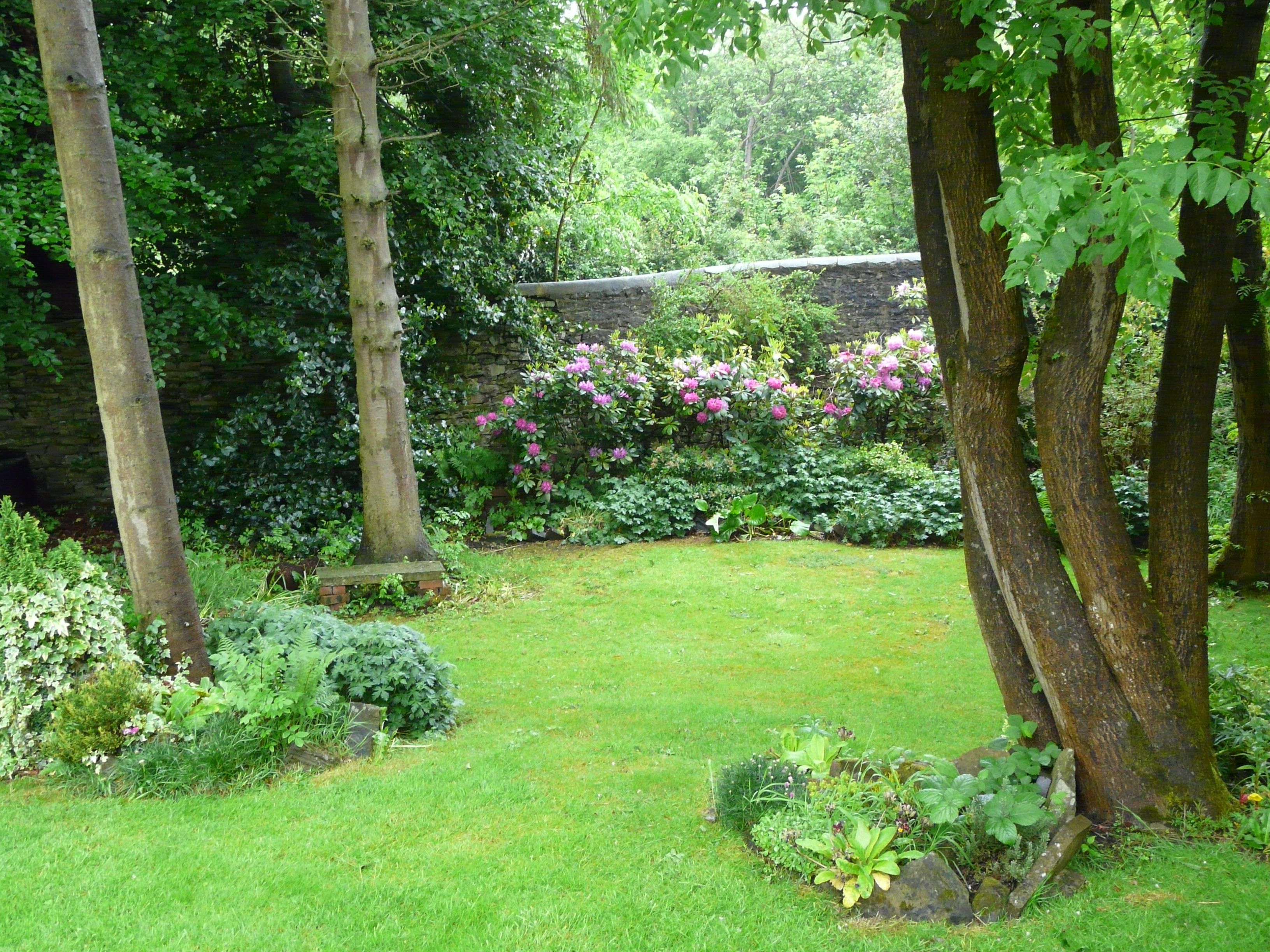 Woodland garden gardening pinterest for Landscape my garden
