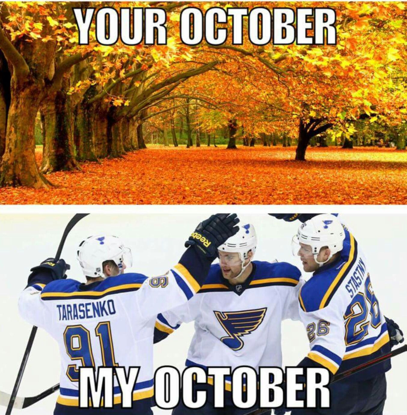 Totally True Opening Night Hockey Lgb St Louis Blues Hockey St Louis Blues Funny Sports Memes