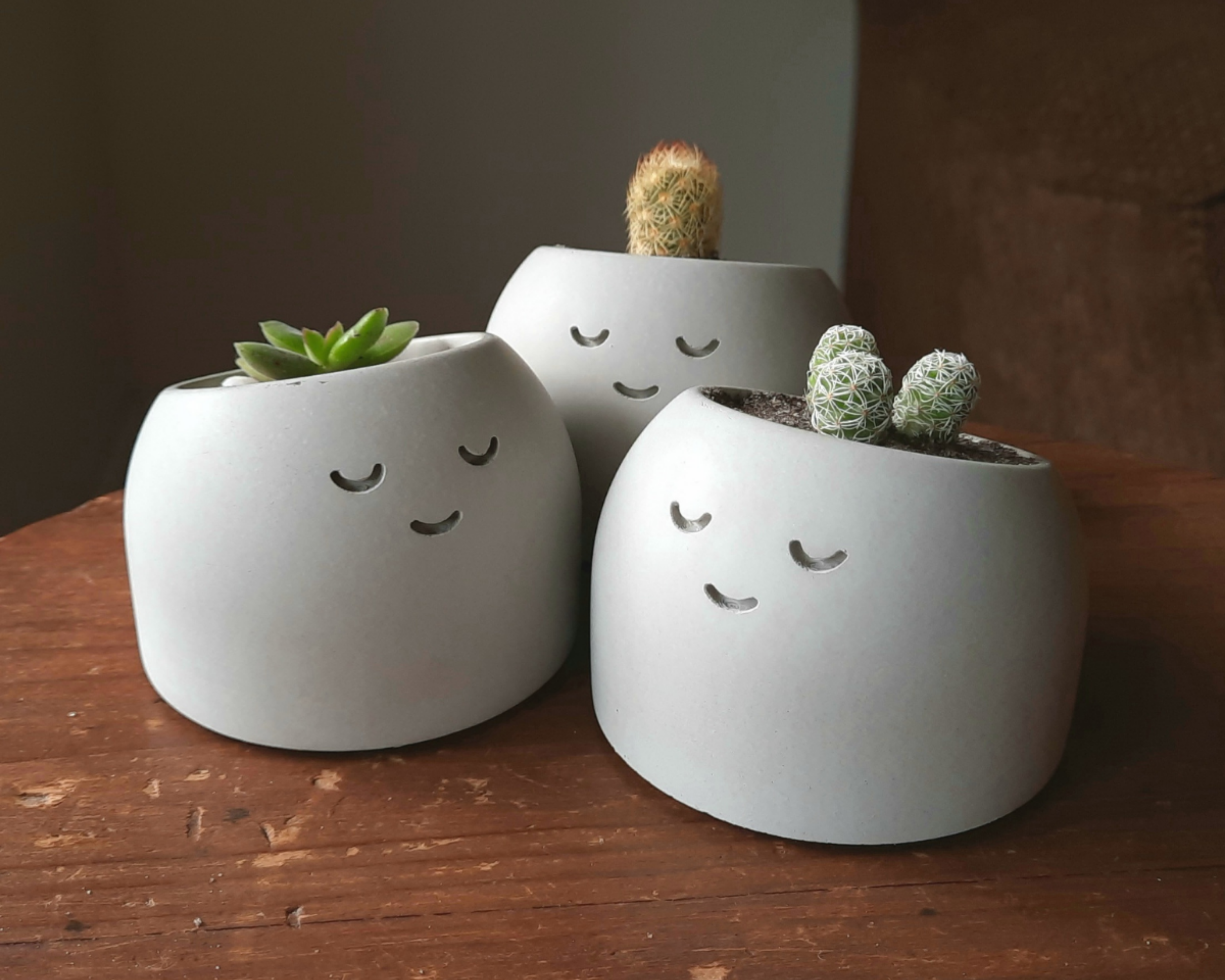 20% OFF for a limited time! Show off your plant's natural charm! This little planter's dream is to make you smile!Give your tiny plants, cuttings, and propagations some personality by planting them in this cute, sleepy little plant holder.These planters come with a drainage hole at the bottom to ensure that your plant's roots stay in tip-top shape! Hand crafted from raw materials Each and every one of these funny fellows is made from high-strength cement. They're all mixed, poured, sanded, and f