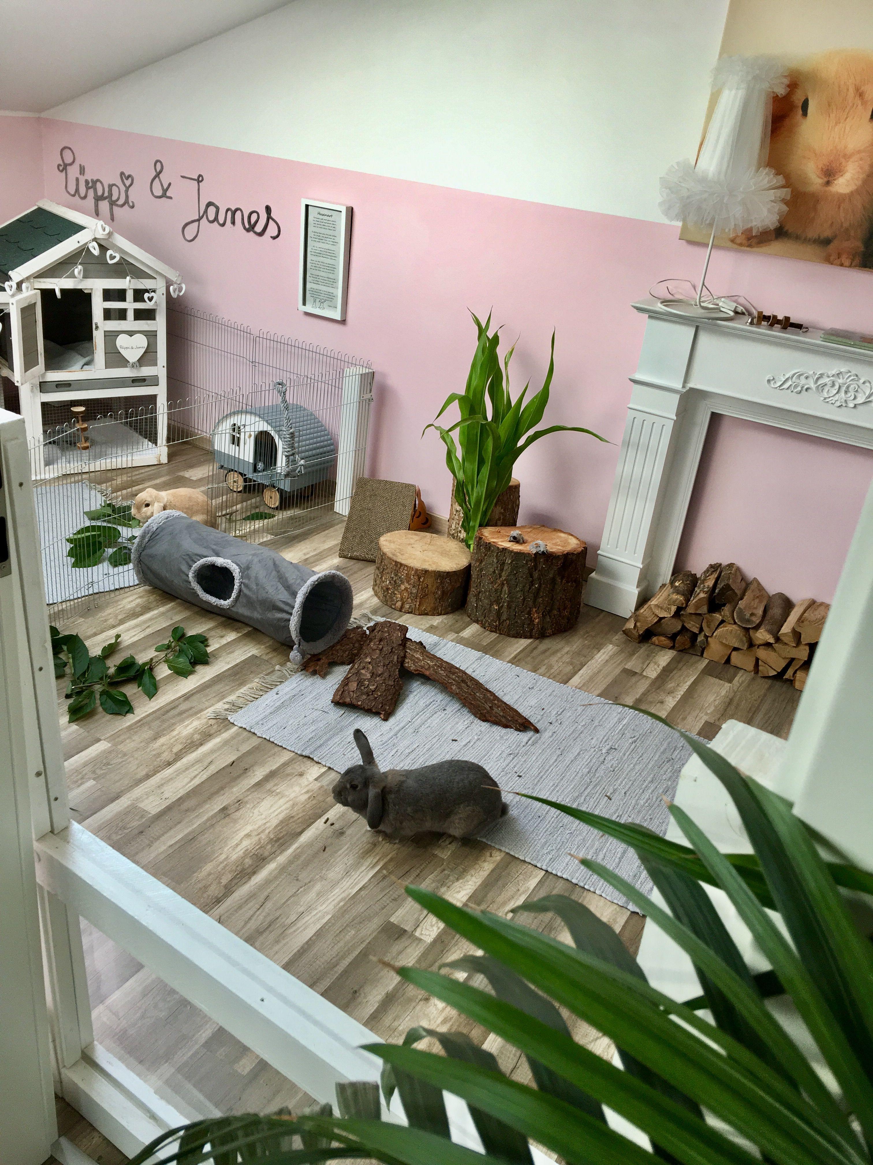 Pin By Melissa Stauffer On Kaninchenparadies Puppijames Bunny Cages Indoor Rabbit Indoor Rabbit Cage