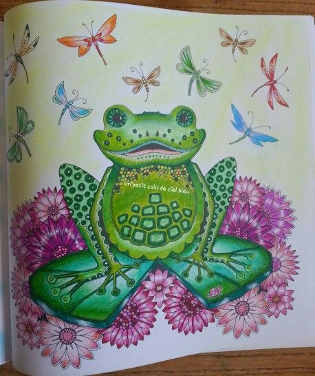 Ma grenouille de for t enchant e de johanna basford a for Decoration foret enchantee