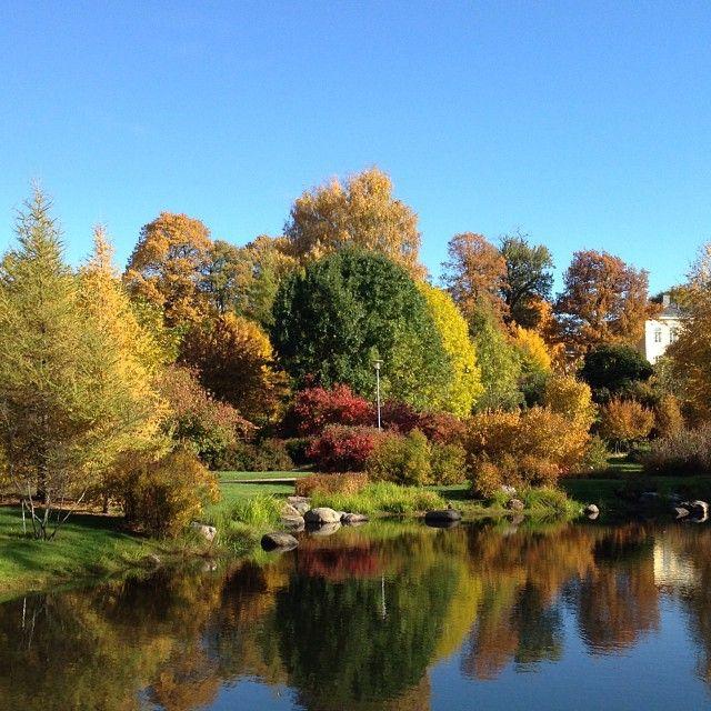 Kumpulan Kasvitieteellinen Puutarha Beautiful Gardens Outdoor
