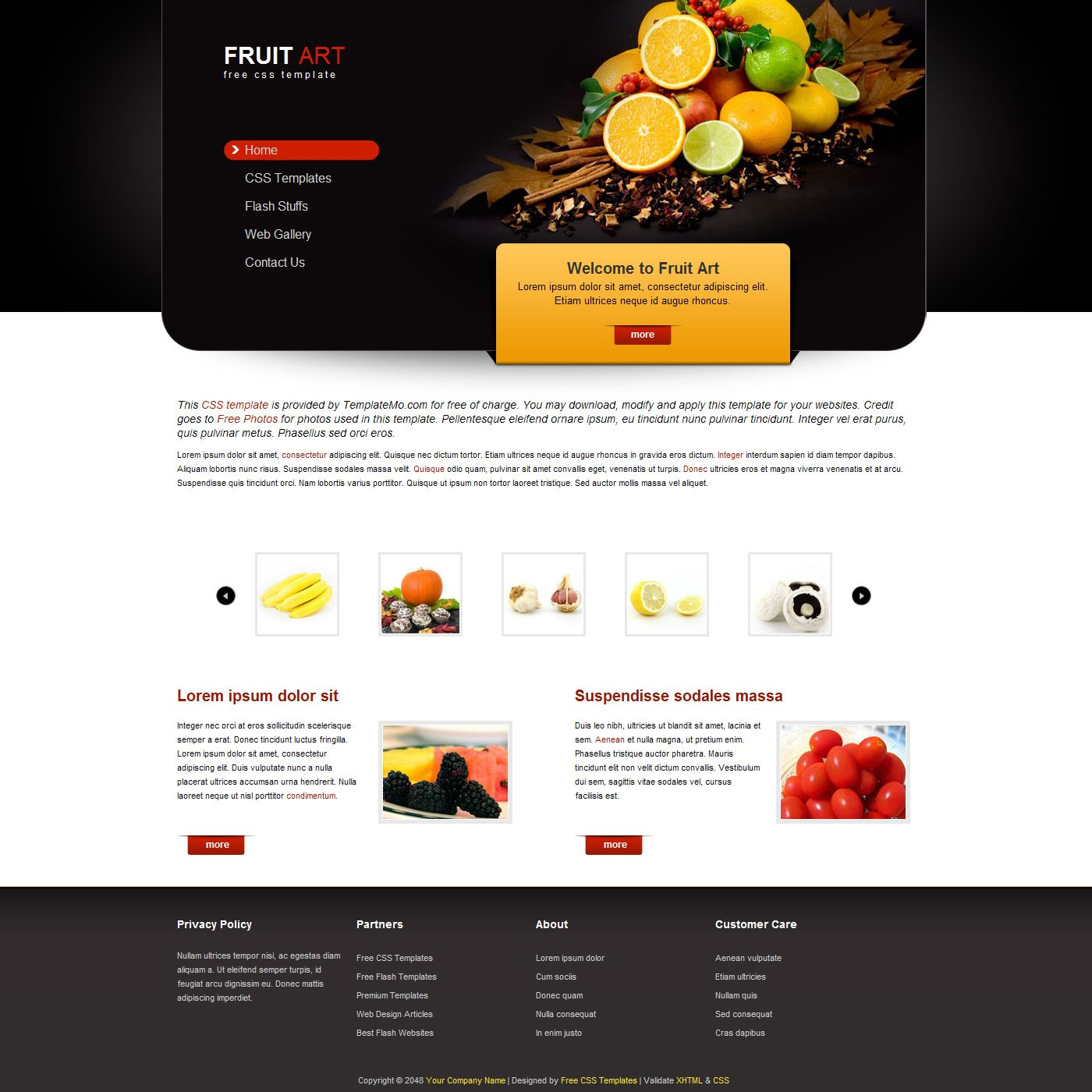 Free Css Templates Free Css Website Templates Download Photo