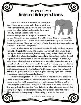 animal adaptations reading comprehension passage stories to answer reading comprehension. Black Bedroom Furniture Sets. Home Design Ideas