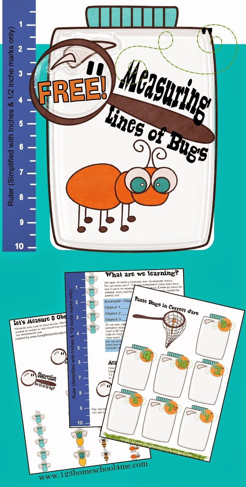Measuring Bugs ~ Free Printable | Math worksheets, Worksheets and ...