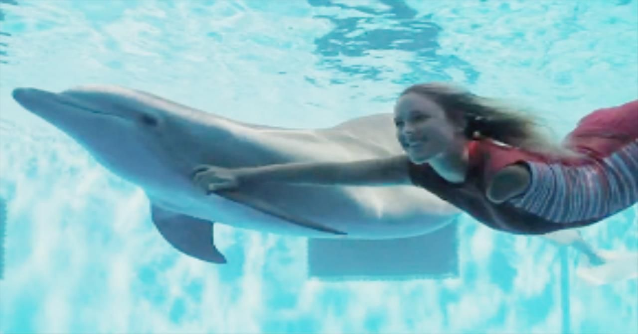 Dolphin Tale 2 - Official Trailer - Movies | Movies | Pinterest ...