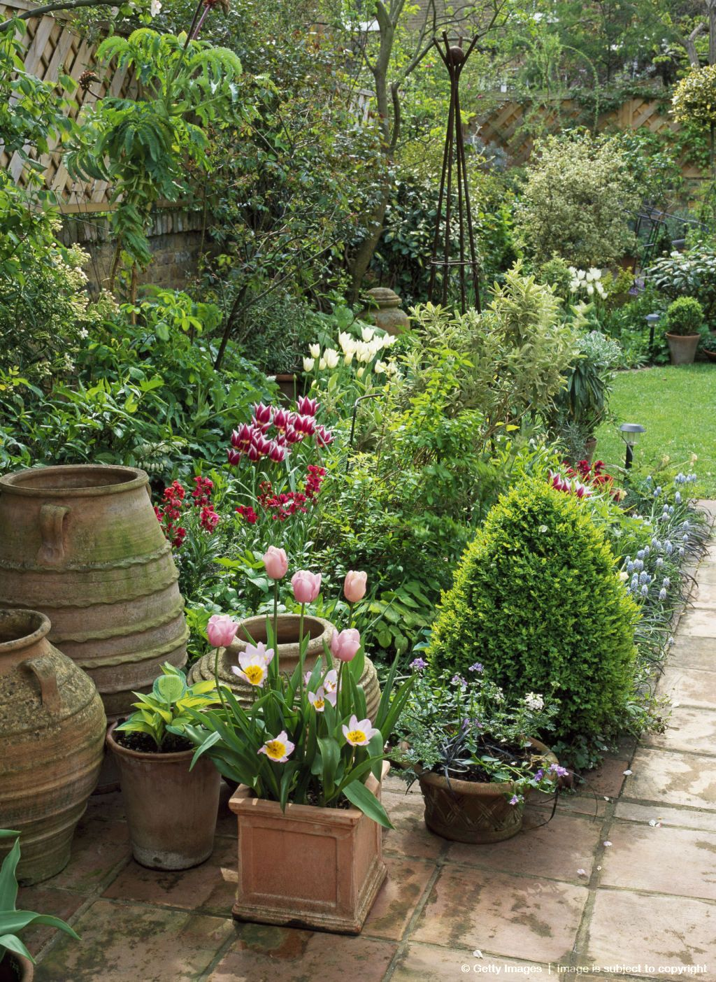 Image detail for small urban garden with pots in spring for Small container garden ideas