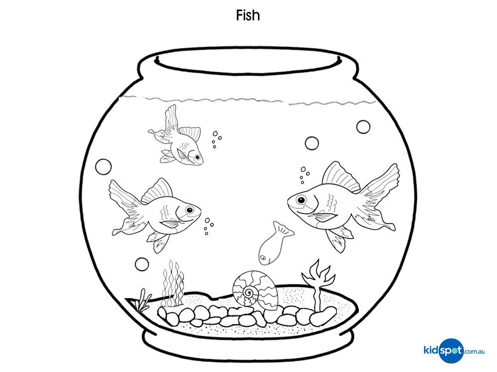 24092bfb6f5633d86f75b3e1411d7bd8 » Goldfish In Tank Coloring Pages