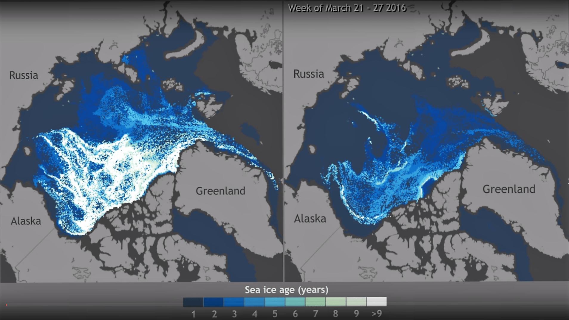 Este interesantísimo pero perturbador vídeo muestra la evolución de los hielos del Ártico desde 1990 hasta hoy. Cuanto más se tarde en hacer algo, más difícil será actuar.